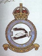 Znak a schvalovací listina znaku 312. československé stíhací perutě RAF